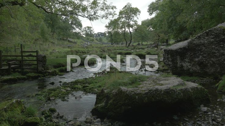 4K Malham Beck Stream by Malham Cove Lime Stone Cliff Woodland Trees - Stock Footage | by RyanJonesFilms