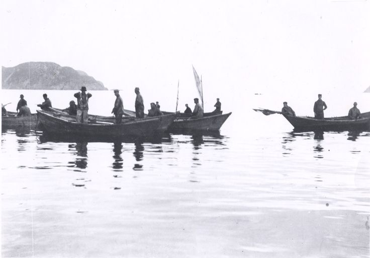 squid jigging from dories, Newfoundland, 1900