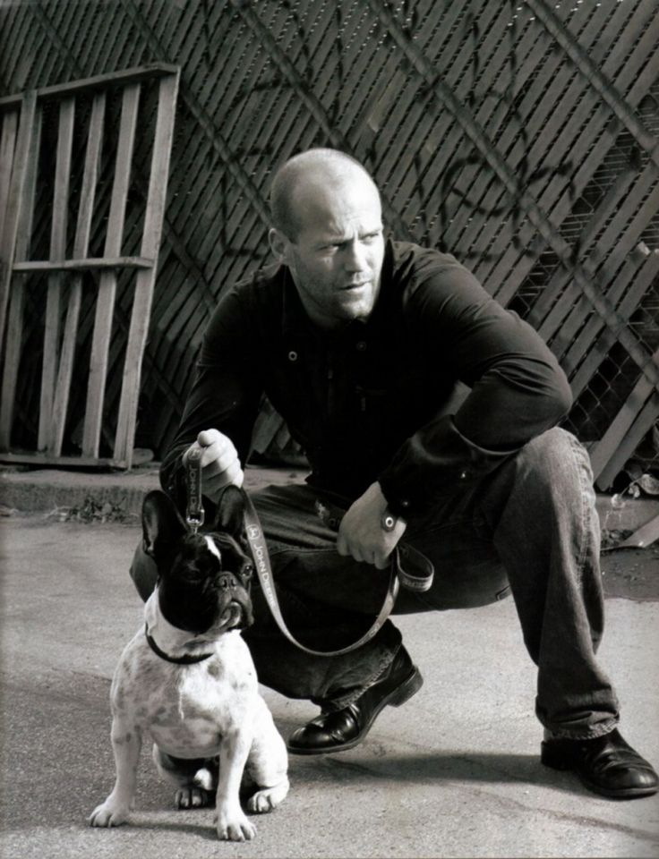 Jason Statham... he is hot and that is a super cute dog. Perfection.
