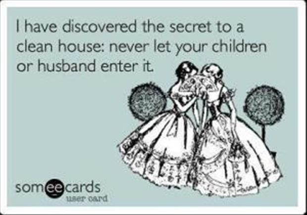ecards    clean house
