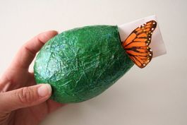 make a butterfly chrysallis with balloon, tissue paper and mod podge.  I did…