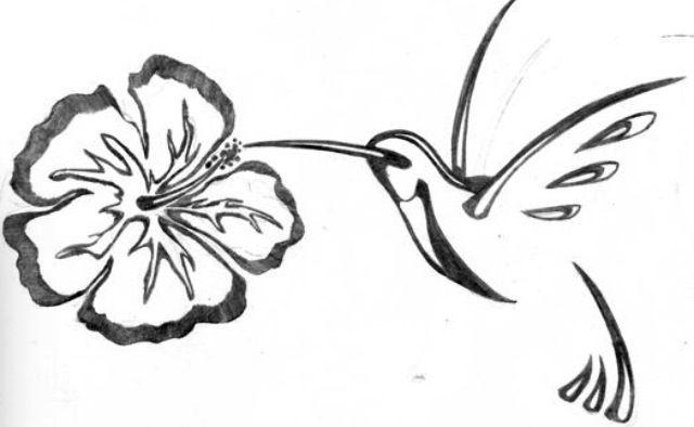 Fleur d 39 hibiscus colibri tatoos pinterest - Dessin d hibiscus ...
