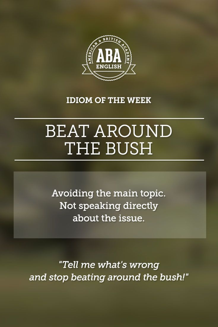 """English #idiom """"Beat around the bush"""" means avoiding the main topic. Not speaking directly about the issue. #speakenglish"""