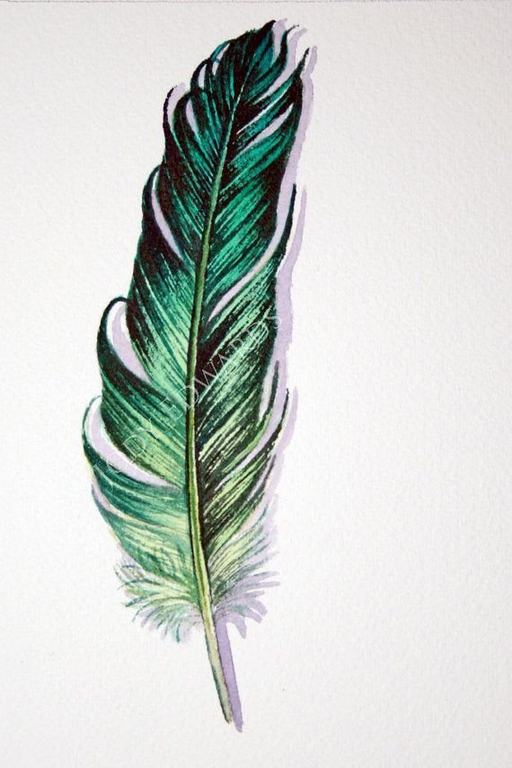 Green Feather Original Watercolor Feather Study by jodyvanB