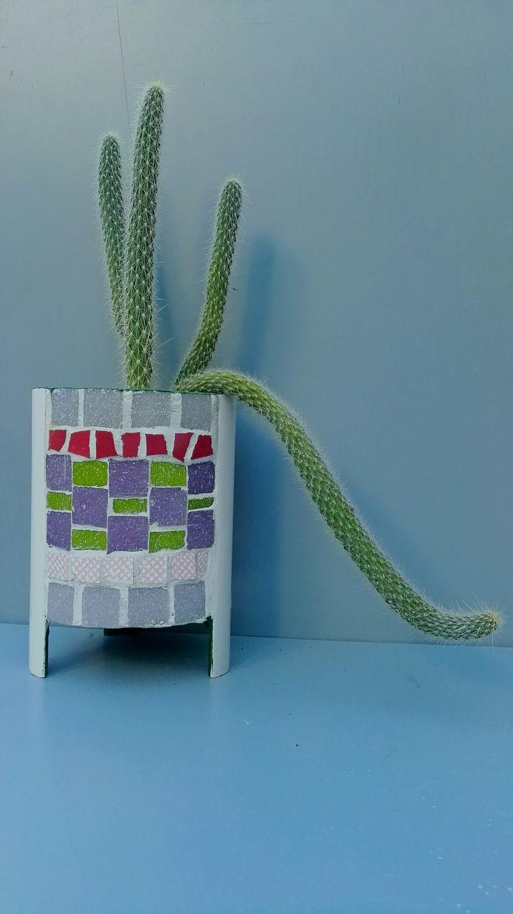 Lata reciclada recubierta con Mosaiquismo para Cactus y suculentas por Ricardo Stefani.