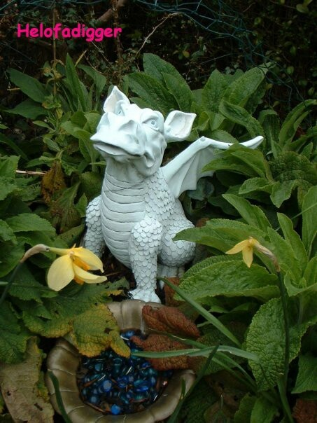 The dragon @ the bottom of one if our gardens.....guarding the treasure & of course the grave of our beloved cat Tiger.