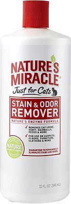 Cleaning Cat Urine