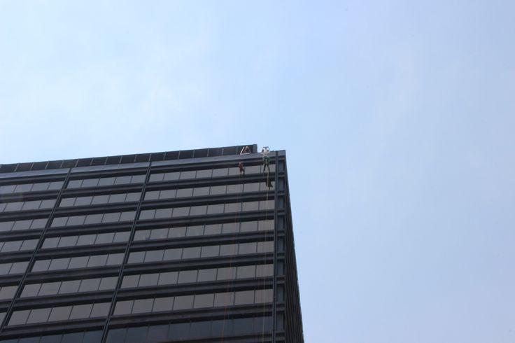 Can you spot Dexter climbing down that building?