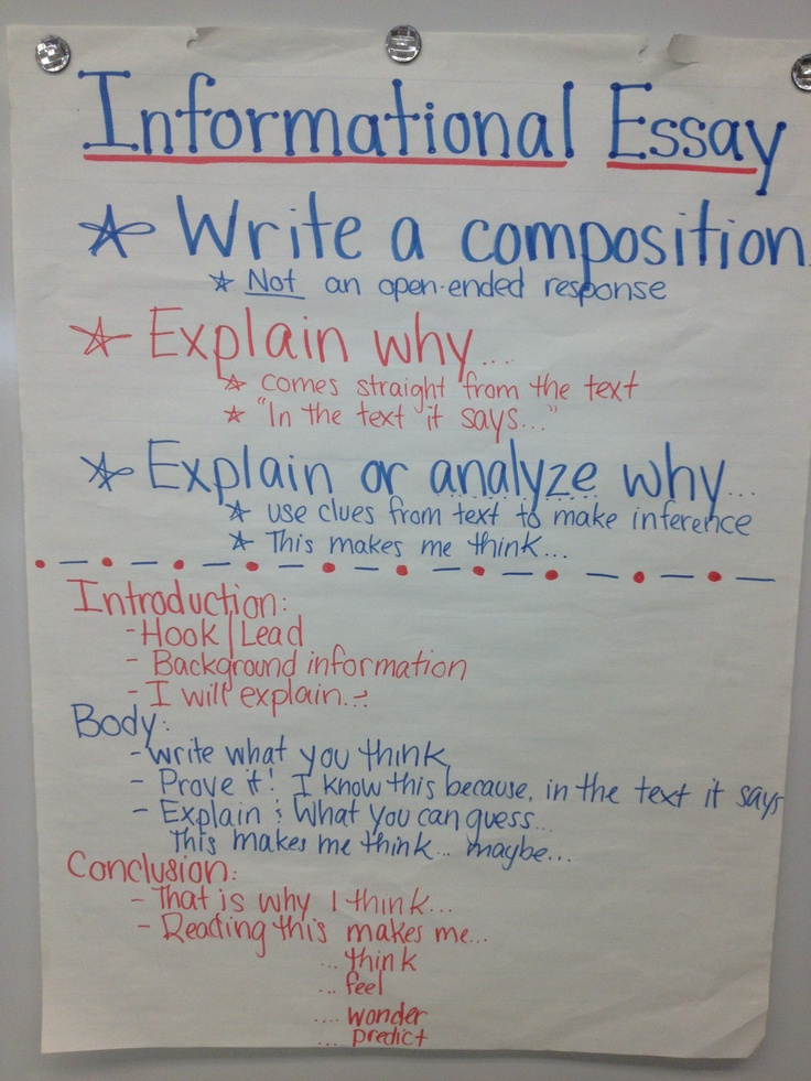 Informational Essay  4th Grade ELA Anchor Charts  Teaching writing Thesis writing Writing