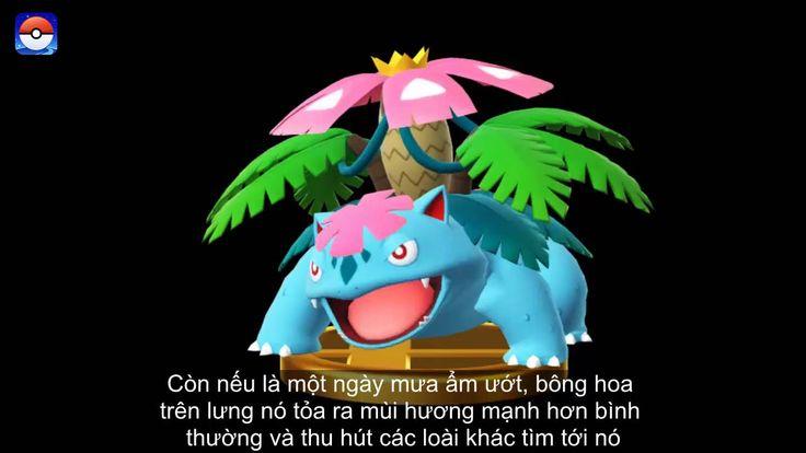 Venusaur Pokemon Hạt Giống - Pokemon Go Gameplay #03