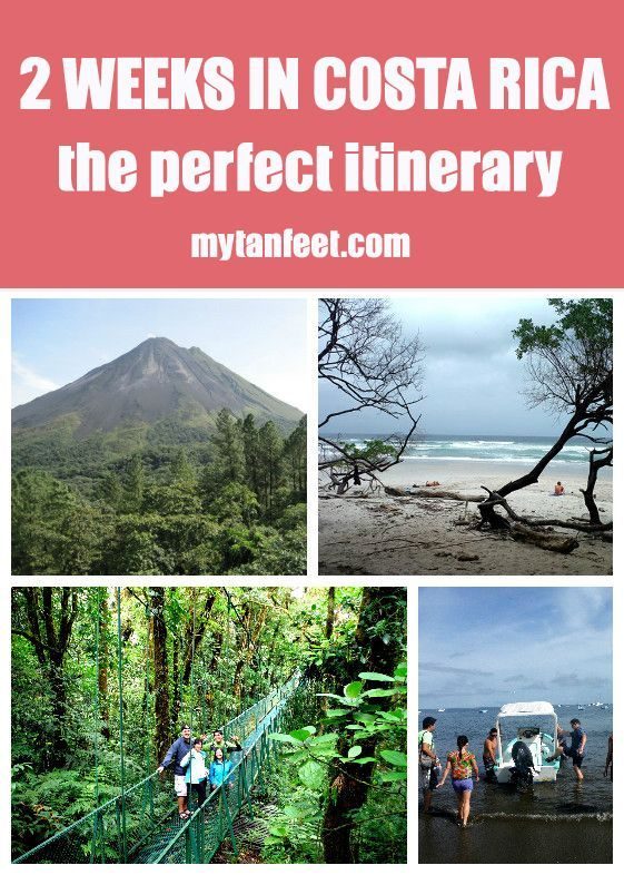 Planning a 2 week visit to Costa Rica? Here is the perfect sample itinerary to visit the highlights of the country: Monteverde cloud forest, Arenal Volcano, Santa Teresa/Mal Pais beaches and Playas del Coco mytanfeet.com/...