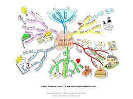 Resultado de imagen para neuroeducacion