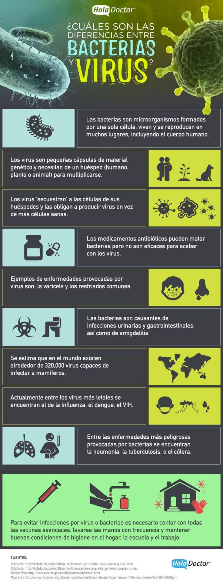Cuáles son las diferencias entre virus y bacterias - HolaDoctor