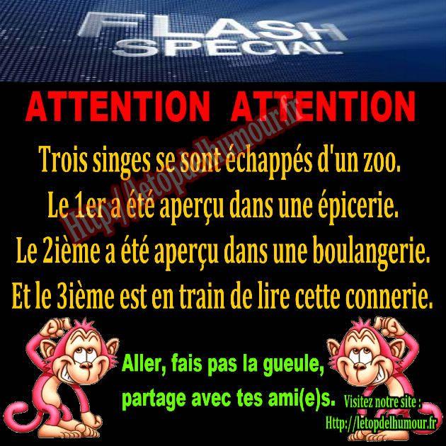 Attention, flash spécial.