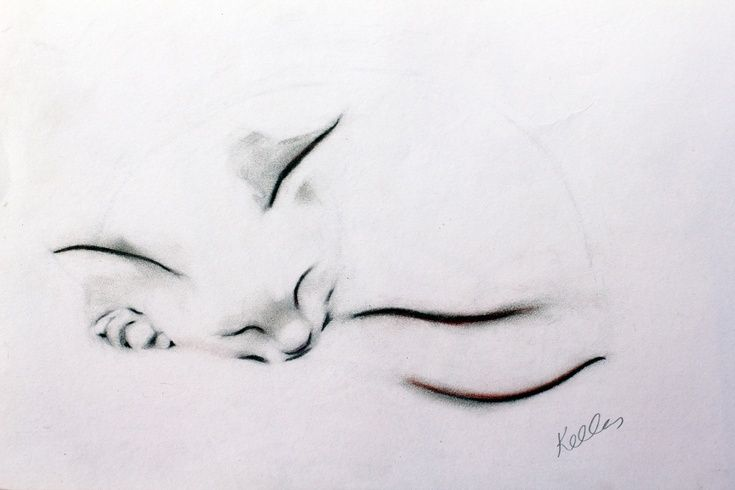 ARTFINDER: Sleeping Cat by Kellas Campbell - My cat was fast asleep, curled up like a round, furry pillow.  I used graphite and pastel pencil and tried to capture her sleepy cuteness.     My nephew sa...