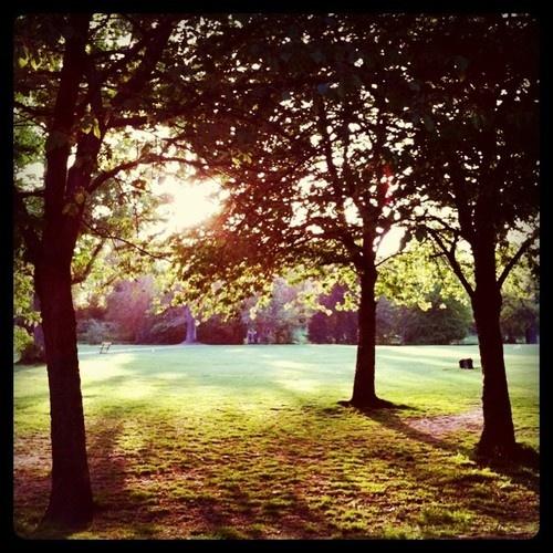 Meanwood Park Leeds