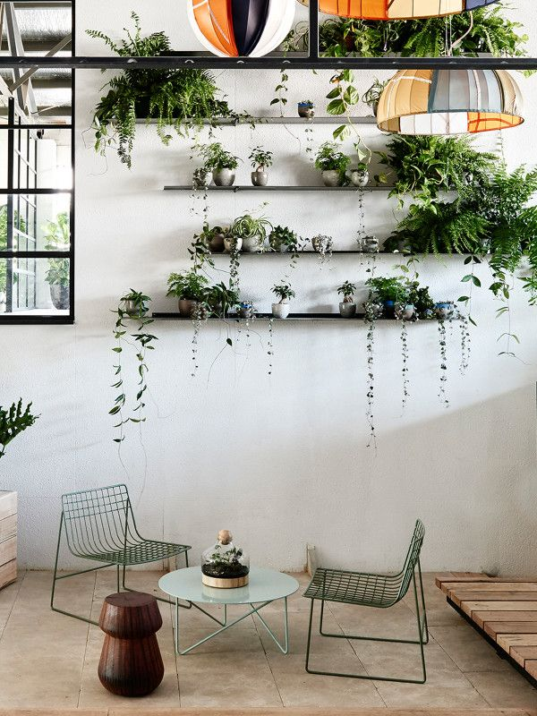 Vertical garden displayed on thin steel shelves at The Design Files Open House 2014. The plant selection, curated by Loose Leaf with Georgina Reid of The Planthunter, includes hoyas, string of hearts, devils ivy and various ferns.  Photo – Eve Wilson for The Design Files.