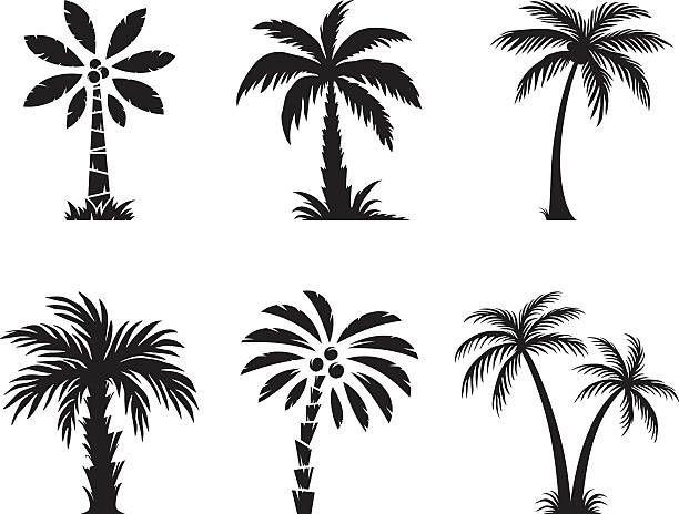 Malvorlagen Baume Und Palmen Ausmalbilder Fur Kinder 10