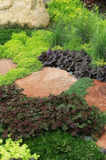 Patio Ground Cover Ideas flagstone patio and ground cover ideas Between The Variegated Liriope And The Patio Beautiful Pathway Of Mixed Ground Covers