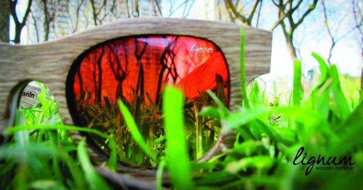 Lignum Wooden Eyewear  Think organic!