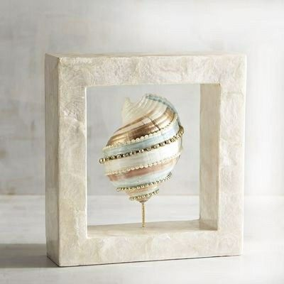 Pier 1 seashell shadow box