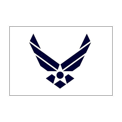US Air Force Logo, really want behind my ear or on my hip area for my dad and brother.