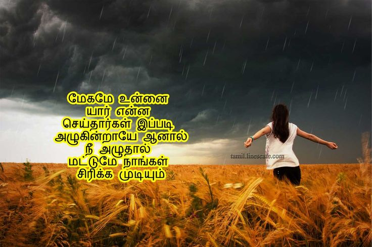 25 best friendship quotes in tamil on pinterest tamil - Nature wallpaper status ...