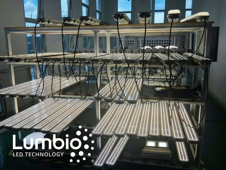 Have a look at LED Tri proofs Lumbio® lights already at the phase of testing.