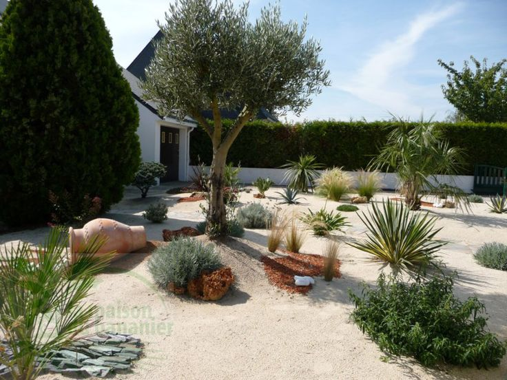 74 best images about jardin exotique on pinterest for Decoration jardin mediterraneen