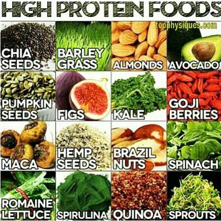 High protein vegetable options
