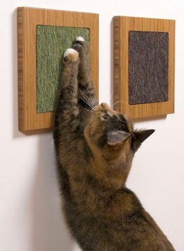 Móveis e objetos entretêm os gatos e ainda decoram a casa; veja - Casa e Decoração - UOL Mulher