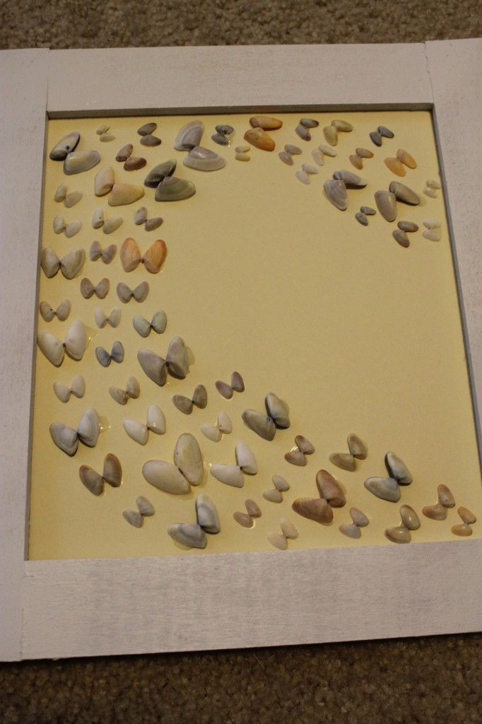 "butterfly sea shell ""flight"" framed display - easy DIY!...would be cute for a little girls room with some dipped in colors to match decor"