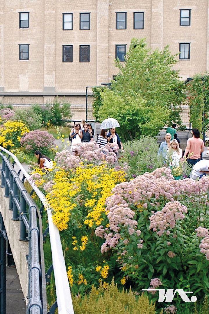 Dimana taman kota yang menurut Anda paling unik? Di Kota New York, Amerika serikat terdapat sebuah taman kota cantik yang dibangun dari bekas rel kereta api. Memukau adalah kata yang terucap setiap kali orang mengunjungi The High Line. Berbagai jenis tanaman tumbuh disini mengikuti pergantian musim. Sehingga antara musim dingin, musim panas, musim semi, dan musim gugur, tanaman yang tumbuh berbeda-beda. Salah satu hal yang menjadi daya tarik High Line adalah Anda bisa melihat kota New York…