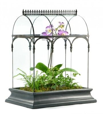 Barrel Vault Terrarium has great planting area. The curved glass and height will provide you with plenty of space to create an inspiring garden scene.