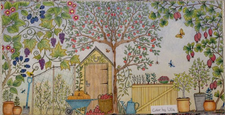 "My version, from the book ""Secret Garden"" by Johanna Basford, painted with Lyra Polycolor pencils."