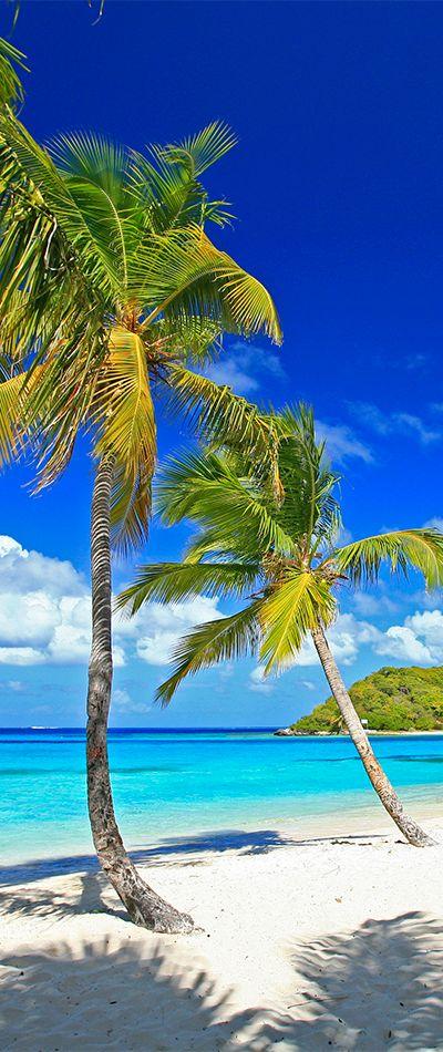 Amazing Saint Vincent & the Grenadines - http://www.travelandtransitions.com/destinations/destination-advice/latin-america-the-caribbean/