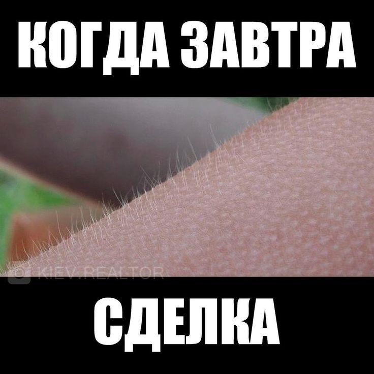 Когда завтра сделка  #недвижимость #риэлтор #мем  https://www.instagram.com/p/BEPET4sgFzE/?taken-by=kiev.realtor