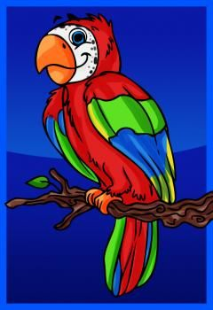 how to draw a cartoon parrot easy