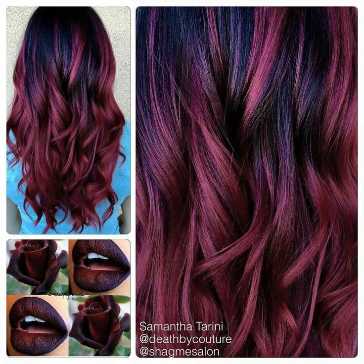 Best 25+ Biolage hair color ideas on Pinterest   Hair ...