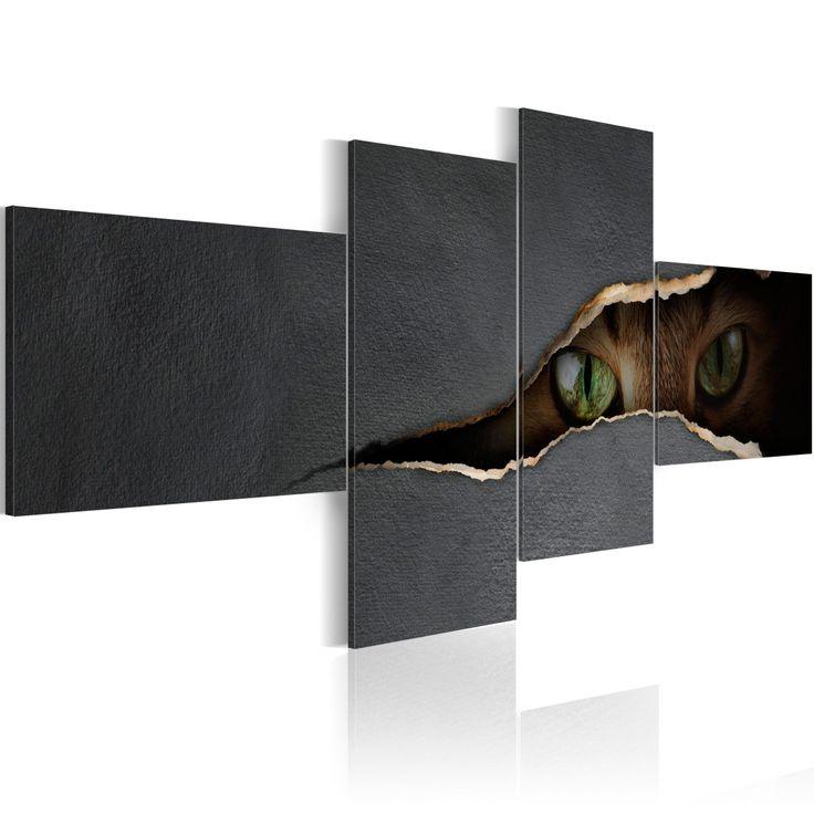 Obraz - Kocie oczy