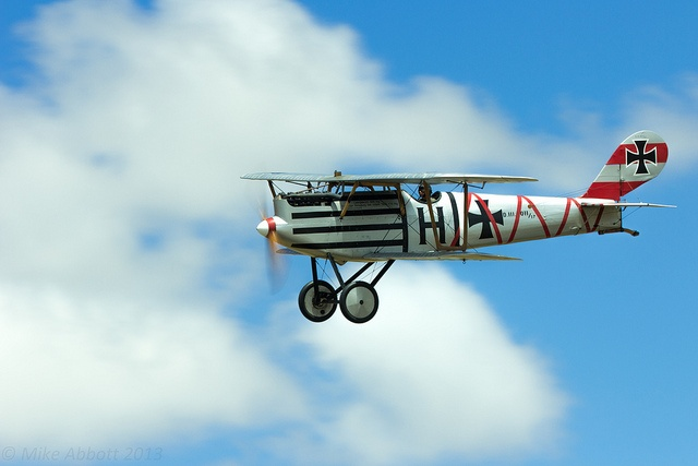 Pflaz D.III #flickr #plane #WW1 #replica