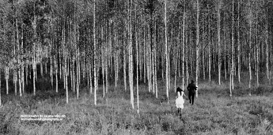 destination wedding photography in Sweden by juliana wiklund