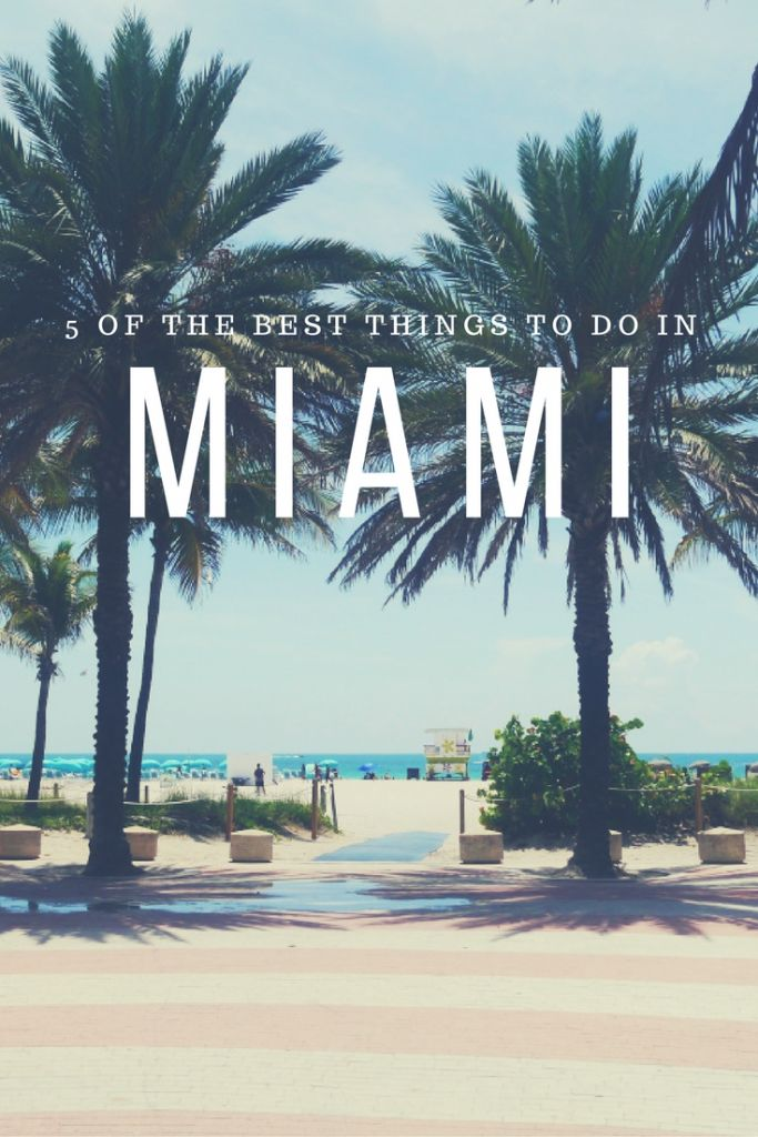 5 of the Best Things to do in Miami