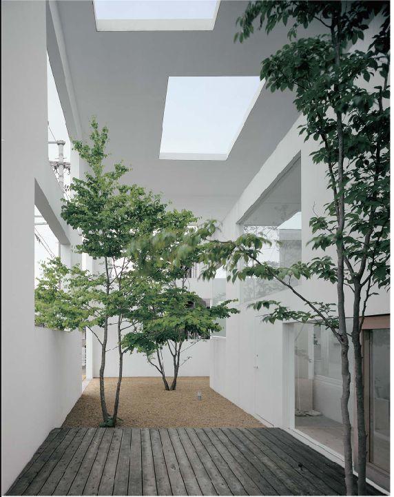 Meerstammige bomen zijn niet alleen in de tuin mooi en sfeervol, maar kunnen blijkbaar ook binnen. House N // Sou Fujimoto Architects. #meerstammig #bomen #boom