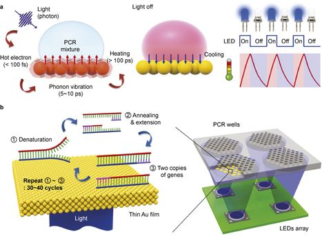 Photonic heating and cooling with light leads to ultrafast PCR-based DNA diagnostics