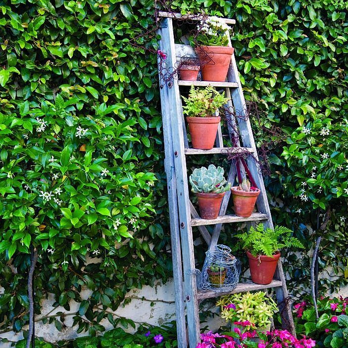 """99 Likes, 4 Comments - Tuis
