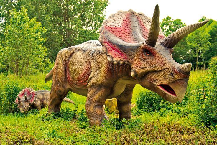 triceratops im dinosaurier land auf r gen foto dinosaurierland r gen meckpomm urlaub. Black Bedroom Furniture Sets. Home Design Ideas
