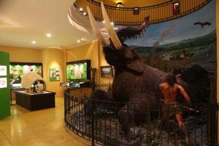 Museo de #Colchagua display..- #colchaguatours | Colchagua Tours