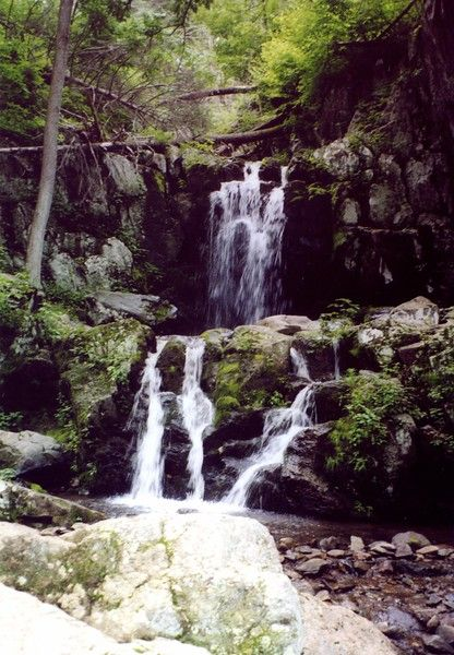 One of six amazing hikes in Shenandoah National Park that even baby boomers can do: Lower Doyle's River Falls cascade down a green mountain side in ribbons of white water. #virginia #hikingtrails #usatravel