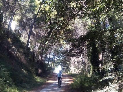 Las mejores rutas de bicicleta de montaña Valencia